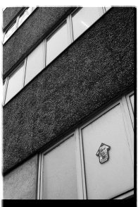 Tri X / 24x36 / Above Dean (old East Berlin)