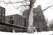 Tri X / 24x36 / Snowfight. Central Park.