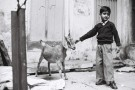 Tri X / 24x36 / The goat and the child - Varanasi